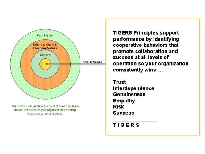 TIGERS-diagram