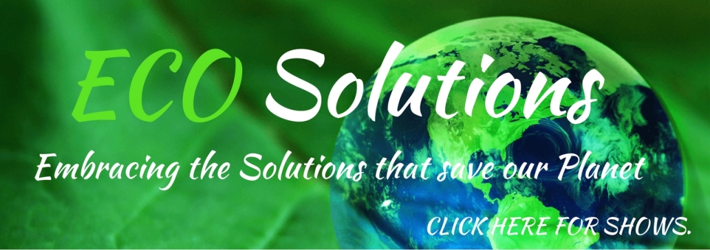 eco-solutions-show