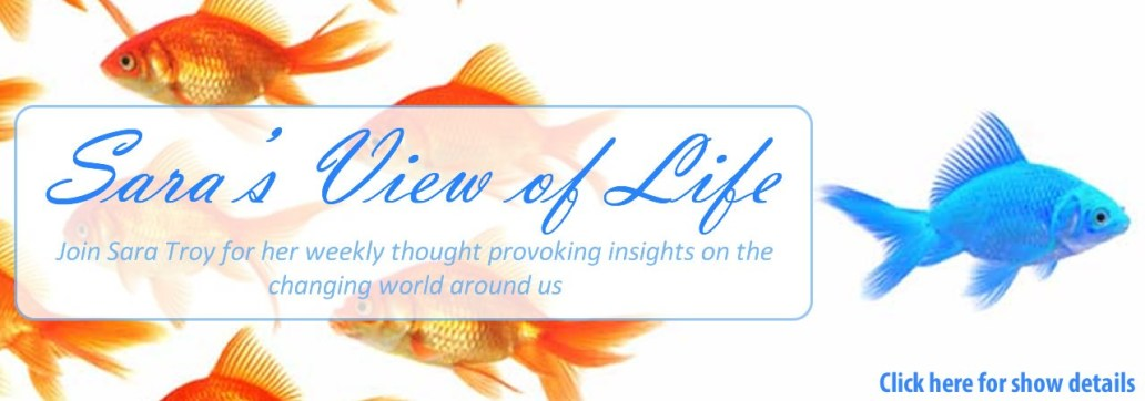saras-view-of-life-main1