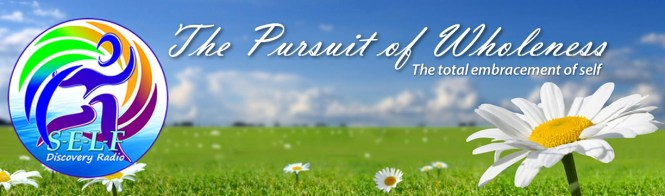 Pursuit of Wholeness Page Header Banner