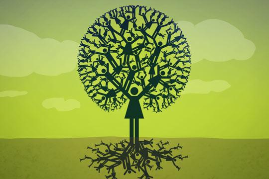 img_treeIllustration_540x360